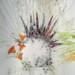 poppies-769x1024 thumbnail
